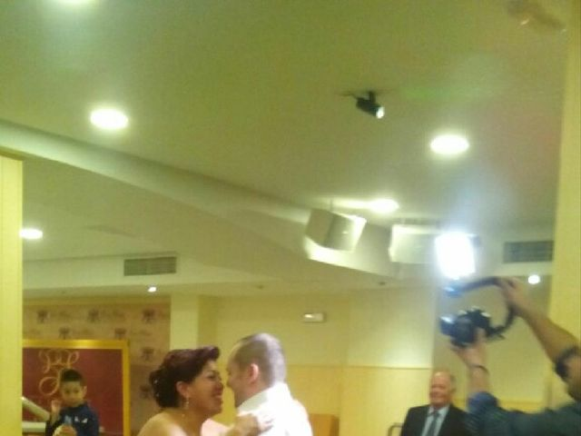 La boda de Manuel  y Cecilia en Linares, Jaén 6