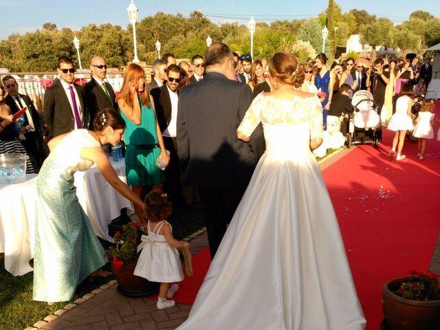 La boda de Javier  y Estefania  en Toledo, Toledo 69