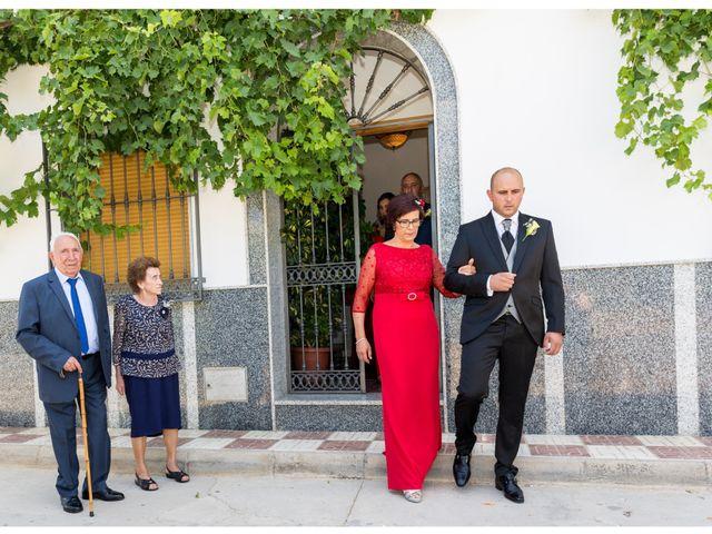 La boda de Raúl y Belén en Algarinejo, Granada 5