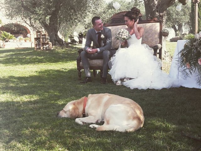 La boda de Steven  y Nicole  en Cistella, Girona 17