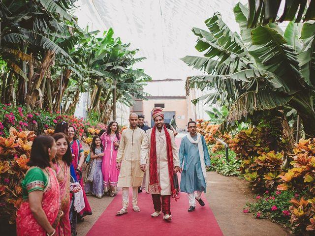 La boda de Punit y Eva en Guargacho, Santa Cruz de Tenerife 34