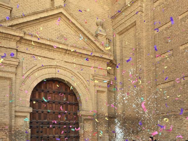 La boda de Álvaro  y Raquel  en Alfaro, La Rioja 4