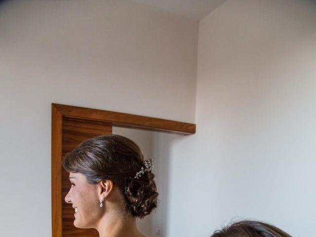 La boda de Javier y Zinaida en San Ildefonso O La Granja, Segovia 16