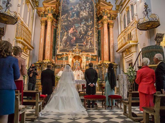 La boda de Javier y Zinaida en San Ildefonso O La Granja, Segovia 28