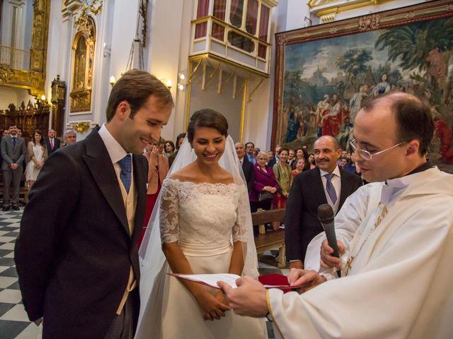 La boda de Javier y Zinaida en San Ildefonso O La Granja, Segovia 36