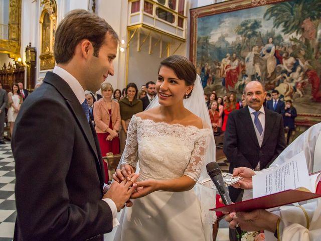 La boda de Javier y Zinaida en San Ildefonso O La Granja, Segovia 39