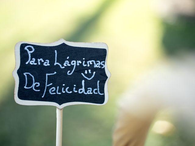 La boda de Guillermo y Angélica en San Roman De Los Montes, Toledo 28