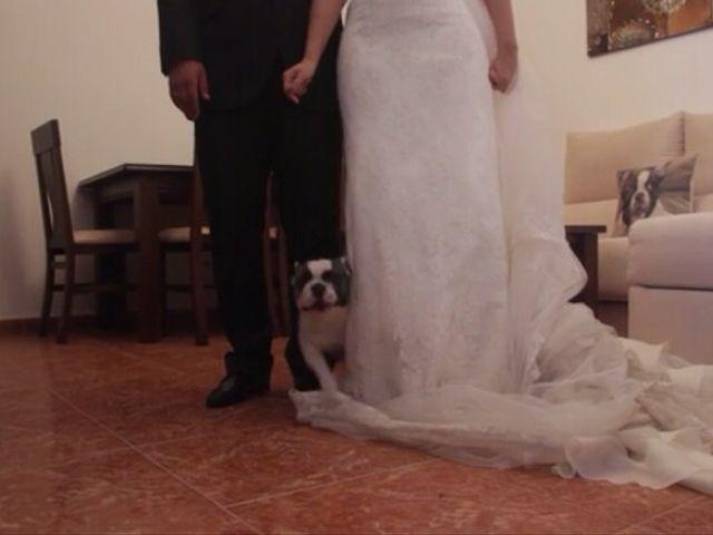 La boda de Antonio  y Estefania  en Cañada Rosal, Sevilla 2