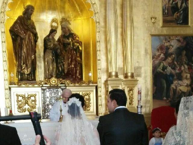 La boda de Antonio  y Estefania  en Cañada Rosal, Sevilla 4