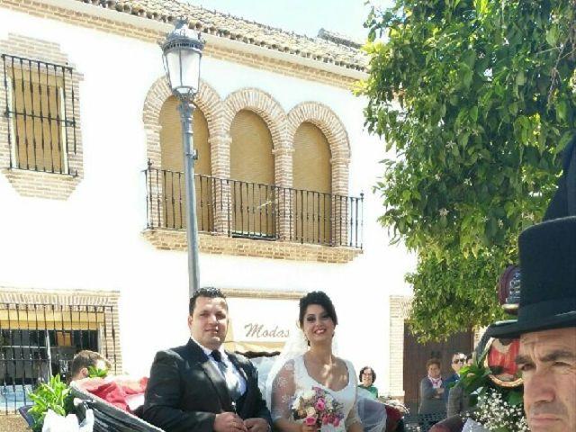 La boda de Antonio  y Estefania  en Cañada Rosal, Sevilla 8