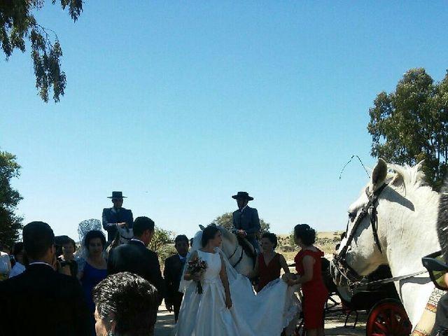 La boda de Sergio y Irene en Garrovillas, Cáceres 8