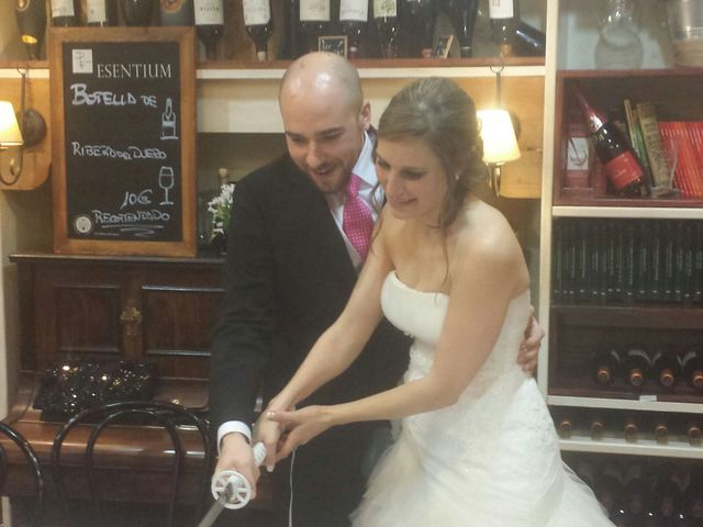 La boda de Toño y Elena en Fresnedilla De La Oliva, Madrid 4