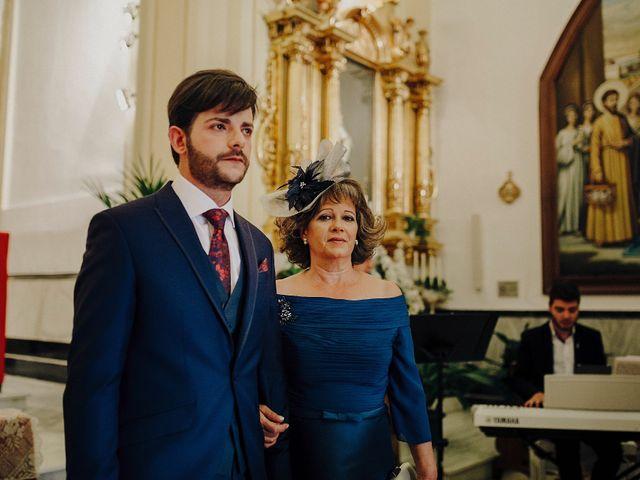 La boda de Sergio y Lourdes en Daimiel, Ciudad Real 18