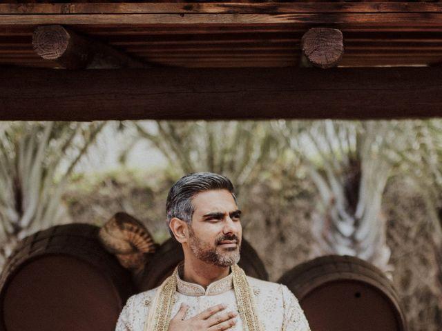 La boda de Ravi y Lisa en Guimar, Santa Cruz de Tenerife 42