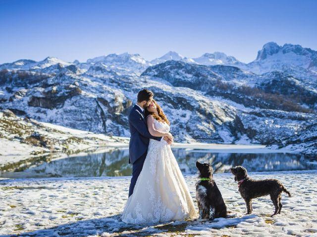 La boda de Ruben y Noelia en Cangas De Onis, Asturias 29