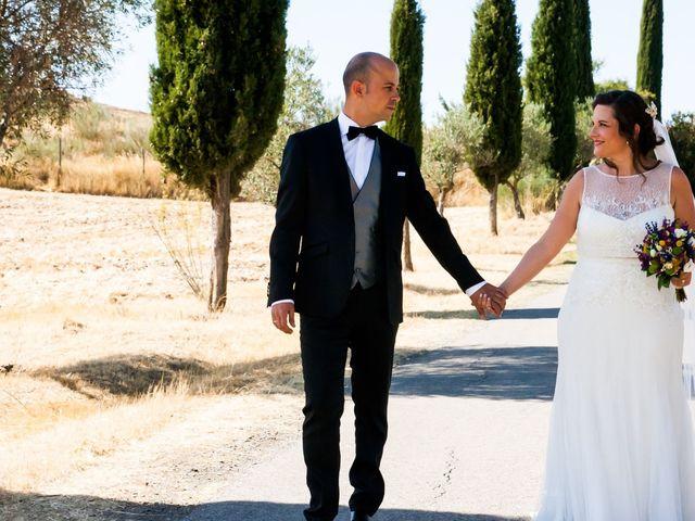 La boda de Sergio y Susana en Torremocha, Cáceres 40