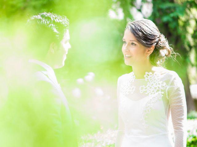 La boda de Carlos y Paula en Lupiana, Guadalajara 28
