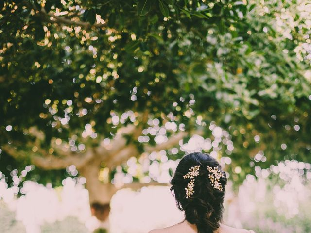La boda de Ambroise y Dulce en Elx/elche, Alicante 16
