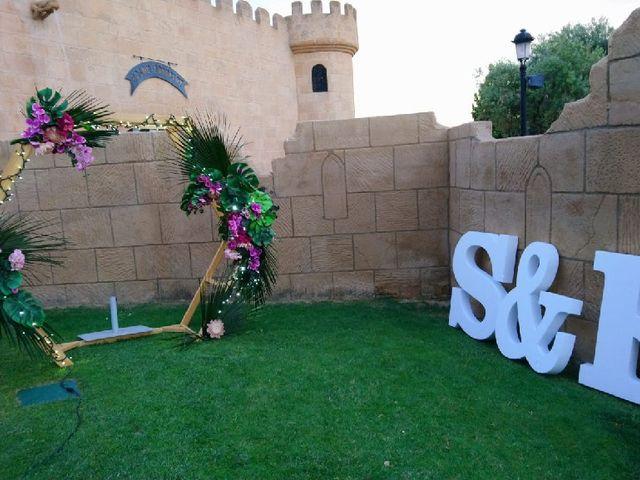 La boda de Saul   y Rocio   en Pedrola, Zaragoza 2
