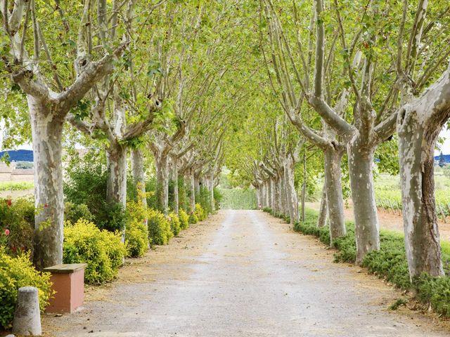 La boda de Brennan y Grace en Sant Cugat Sesgarrigues, Barcelona 5