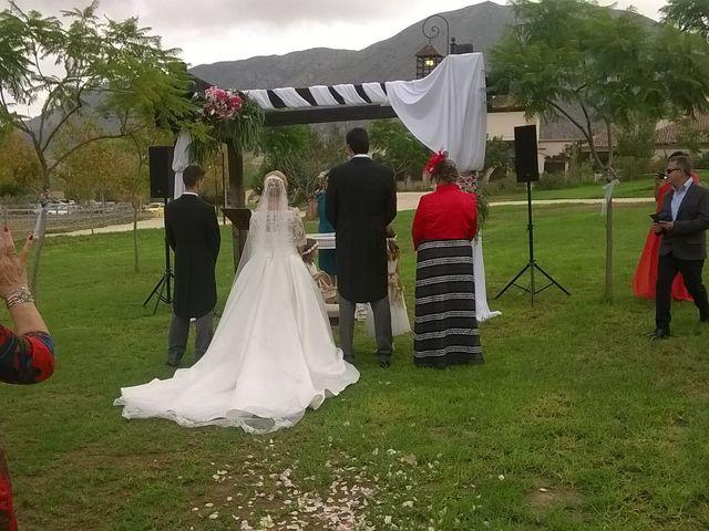 La boda de Ricardo y Asun en Alacant/alicante, Alicante 1