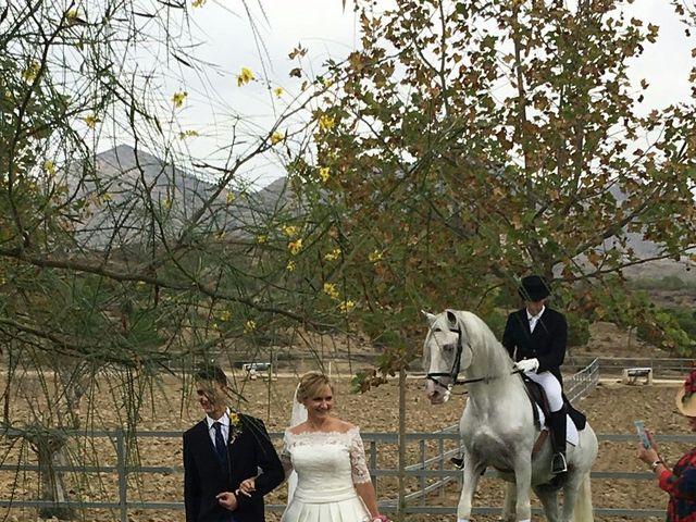 La boda de Ricardo y Asun en Alacant/alicante, Alicante 4