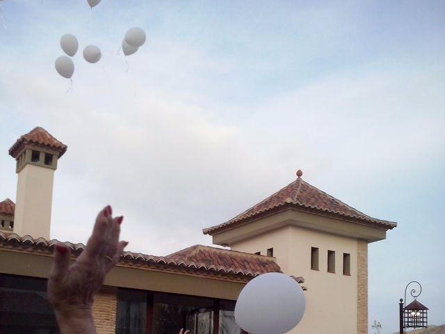 La boda de Ricardo y Asun en Alacant/alicante, Alicante 5