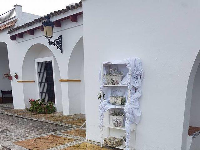 La boda de Jose Andrés y Triana en Los Palacios Y Villafranca, Sevilla 18