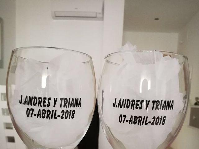 La boda de Jose Andrés y Triana en Los Palacios Y Villafranca, Sevilla 35