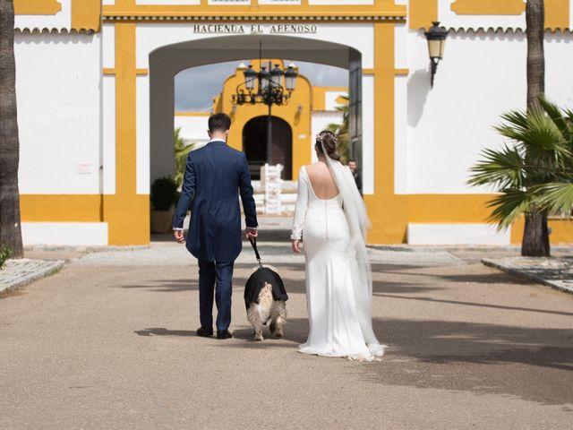 La boda de Jose Andrés y Triana en Los Palacios Y Villafranca, Sevilla 38