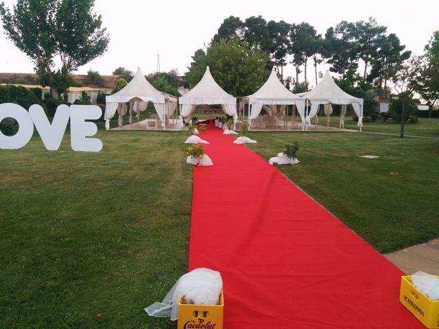La boda de Ignasi  y Anna  en Vilagrassa, Lleida 13