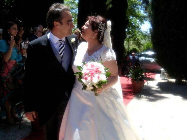 La boda de Curro  y  Carmen en Jaén, Jaén 25