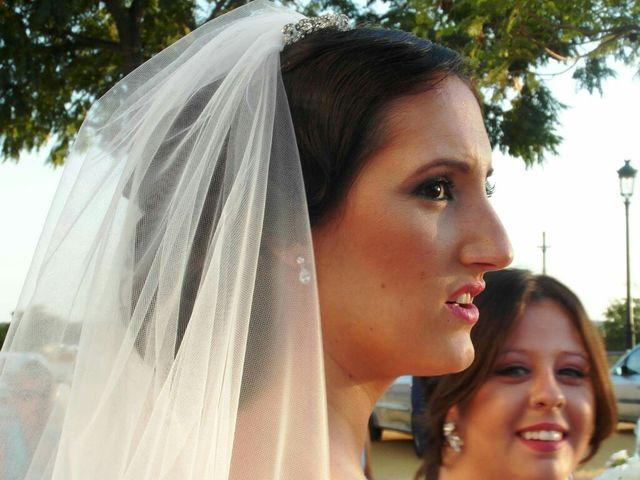 La boda de Carlos  y Saray  en Alcala De Guadaira, Sevilla 3