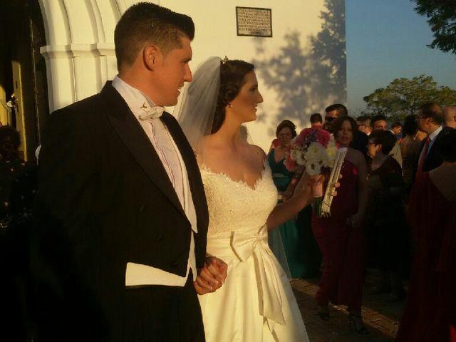 La boda de Carlos  y Saray  en Alcala De Guadaira, Sevilla 9