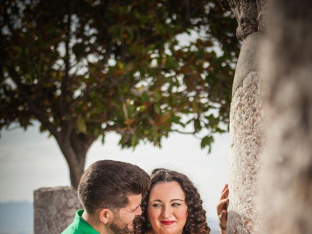 La boda de Jose y Tamara en Alhaurin El Grande, Málaga 4