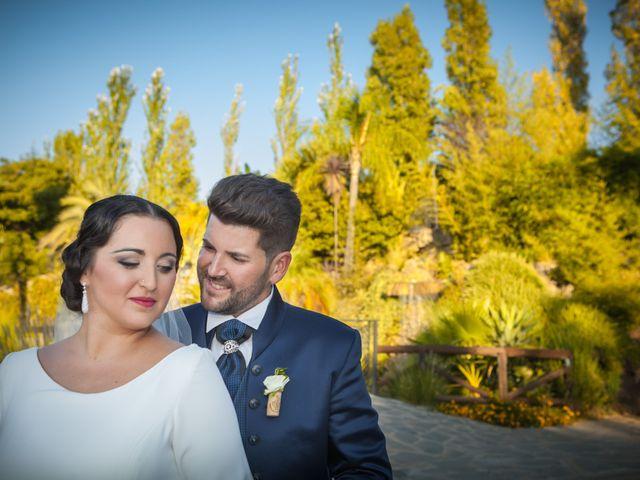 La boda de Jose y Tamara en Alhaurin El Grande, Málaga 1