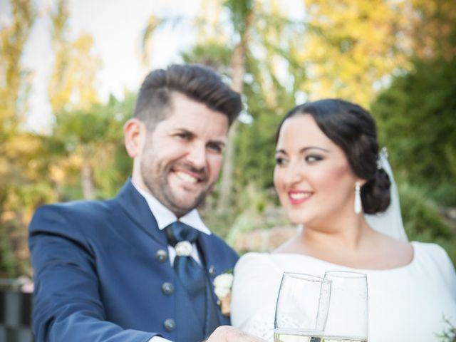 La boda de Jose y Tamara en Alhaurin El Grande, Málaga 23