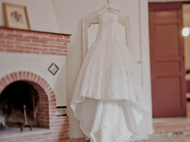 La boda de Jose y Vanessa en Hoyuelos, Segovia 9