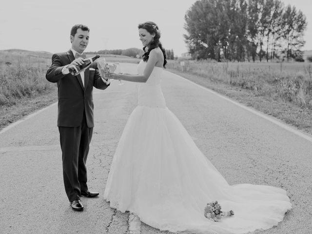 La boda de Jose y Vanessa en Hoyuelos, Segovia 34