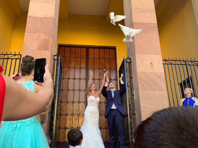 La boda de Luis y Cristina  en Málaga, Málaga 7