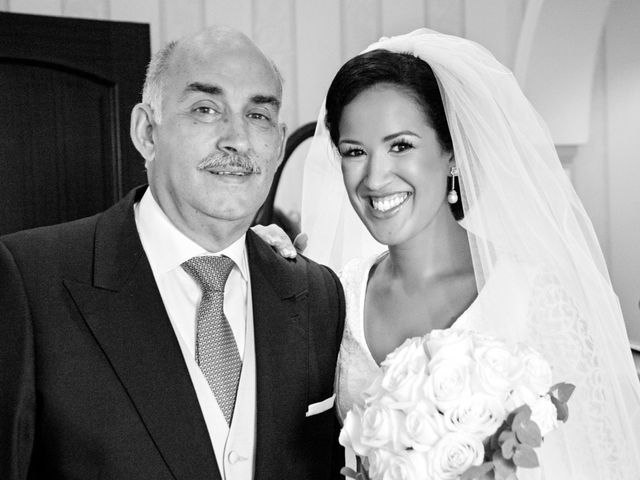 La boda de Adolfo y Isabel en Linares, Jaén 9