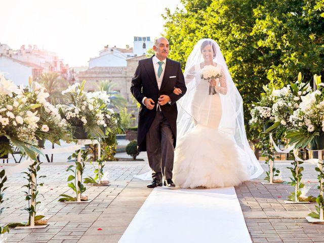 La boda de Adolfo y Isabel en Linares, Jaén 17