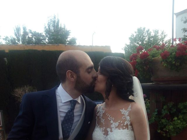 La boda de Patricia y Miguel en Linares, Jaén 1