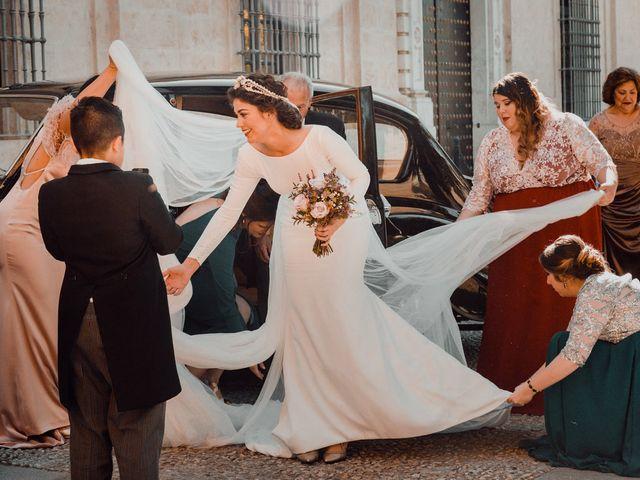 La boda de Adrián y Virginia en Los Palacios Y Villafranca, Sevilla 1
