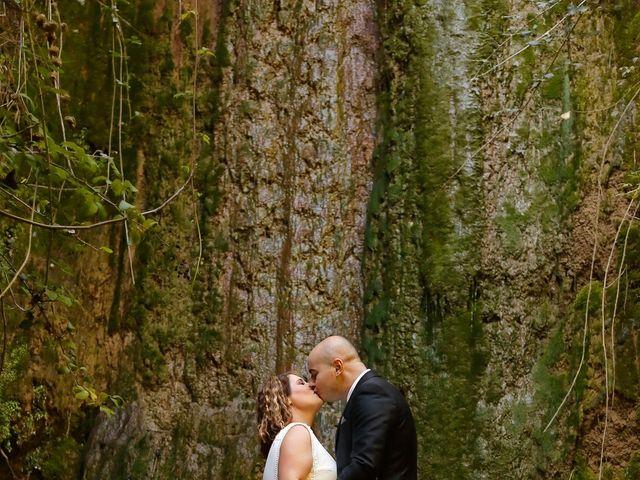 La boda de Fran y Virginia en Linares, Jaén 1