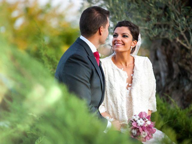 La boda de Rafa y Cristina en Torremocha Del Jarama, Madrid 2