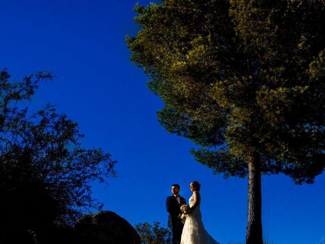 La boda de Cesar y Lidia en Urbanización Las Nieves, Toledo 12