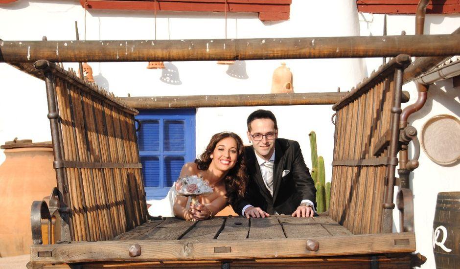 La boda de Rubén y Teresa en Puerto Lapice, Ciudad Real
