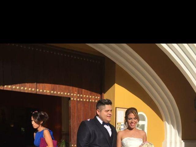 La boda de Fernando   y Tatiana   en San Pedro Alcantara, Málaga 4