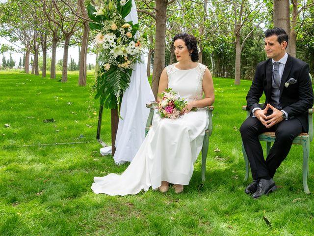 La boda de Victor y Raquel en Ribarroja del Turia, Valencia 2